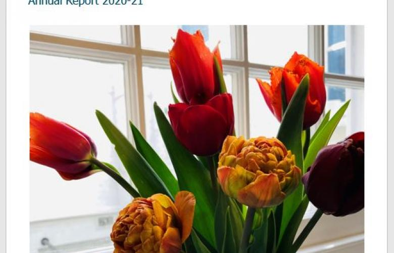 Tulips, Annual Report Cover